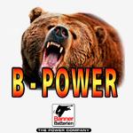 logo-bpower