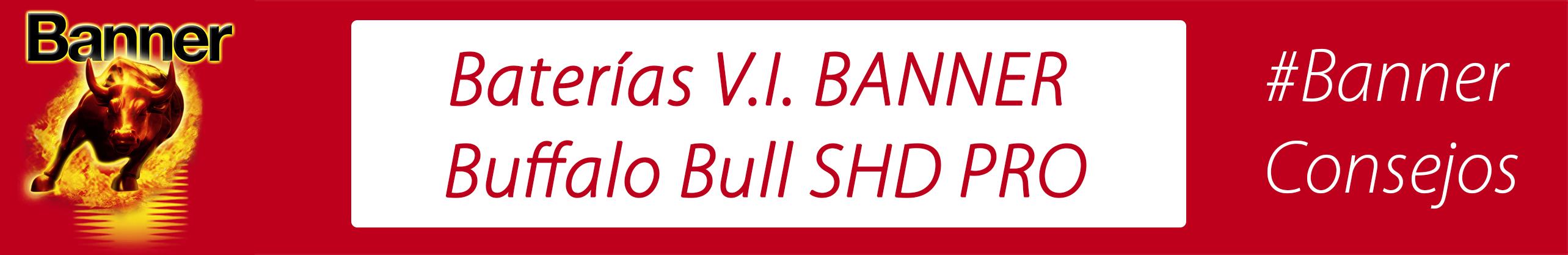 Baterías V.I. BANNER Buffalo Bull SHD PRO